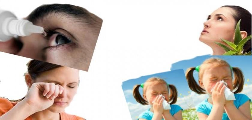 Göz Alerjisini Tetikleyen Faktörler Nelerdir?