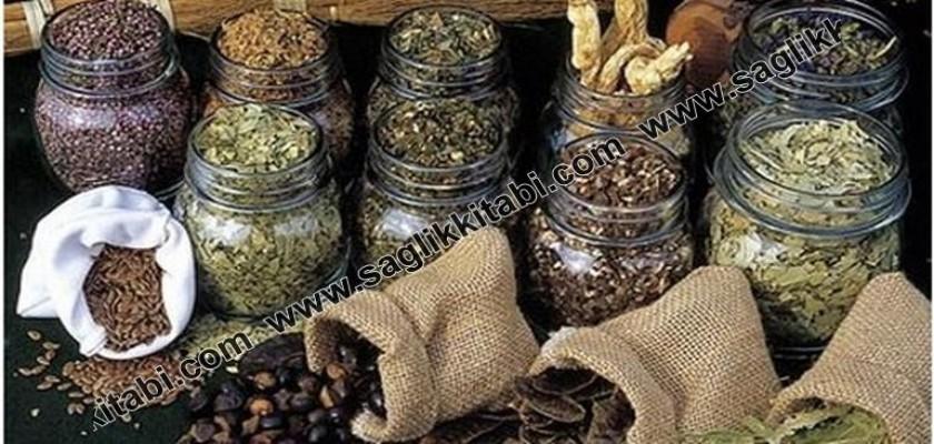 Türkiye'nin Tıbbi Bitkileri